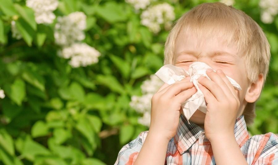 Мальчик держит платок у носа